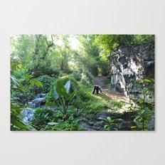 Wilderness Solitude Canvas Print