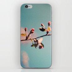 dreaming 3 iPhone & iPod Skin