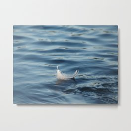 feather in the lake Metal Print