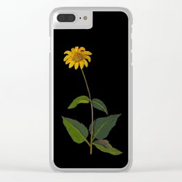 Rudbeckia Trifoliata Mary Delany British Botanical Paper Flower Collage Delicate Flowers Clear iPhone Case