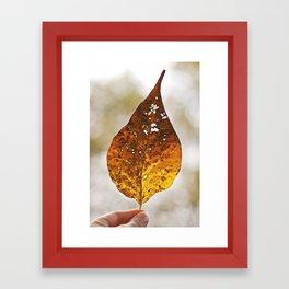 Leaf Framed Art Print