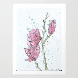 Magnolia #2 Art Print