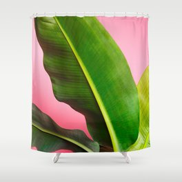 Banana Palm Leaves Pink Background Shower Curtain