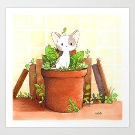 Little cat Art Print