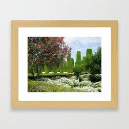 Palace Garden Framed Art Print