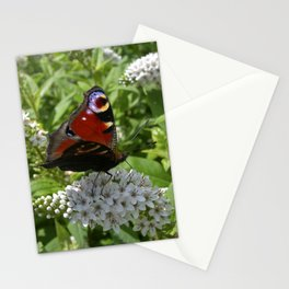 peacock butterfly IX Stationery Cards