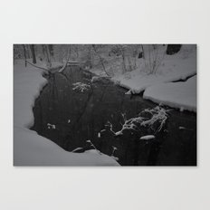 Snowy March Canvas Print