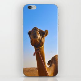 Camel Face iPhone Skin