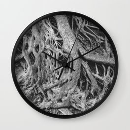 Roots of the Medusa Tree in Greenville, SC Wall Clock