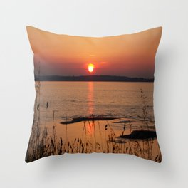 Grasses, backlit by the sea Throw Pillow