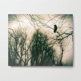 Crow Blur Metal Print