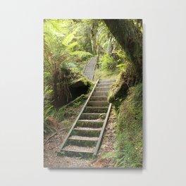 Punakaiki Rainforest Metal Print
