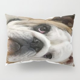 American Bulldog Background Removed Pillow Sham