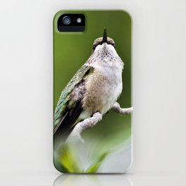 Elegant Hummingbird iPhone Case