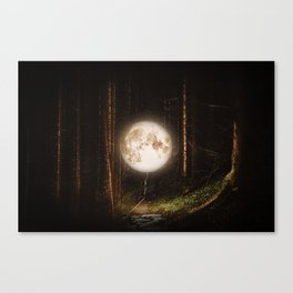 Visiting The Forest Canvas Print
