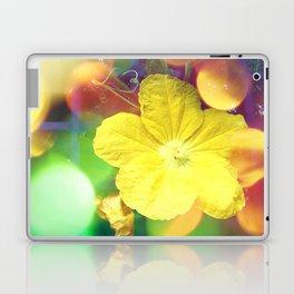 Secret Garden | Cucumber flower Laptop & iPad Skin