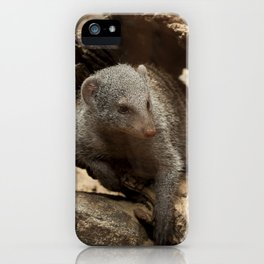 Maxin' N Relaxin' iPhone Case