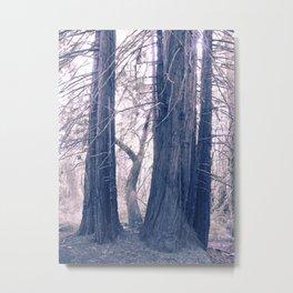 gentle pink rewoods Metal Print