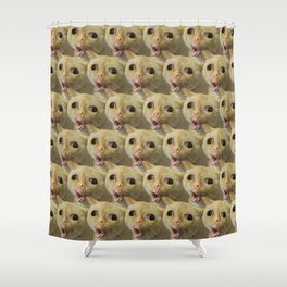 Coughing Cat Meme Pattern Shower Curtain