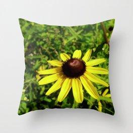 One Black Eye Susan In Summer Throw Pillow