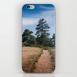 Zimmerman Park iPhone Skin