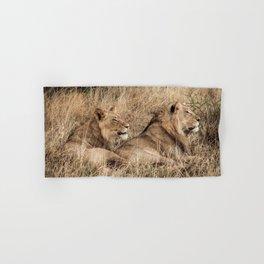 Camouflaged African Male Lions of the Kalahari Desert Hand & Bath Towel