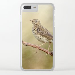 Meadow Pipit Clear iPhone Case
