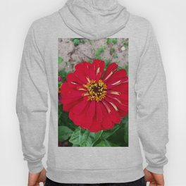 Red madness Hoody