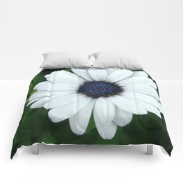White African Daisy Tapestry Print Comforters