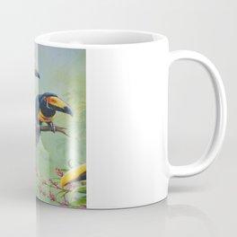 Collared Aracari Coffee Mug