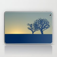 01 - Landscape Laptop & iPad Skin