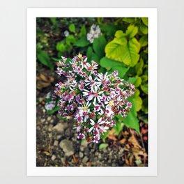 September Flowers Art Print