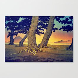 Domi's Heart at Sunset Canvas Print