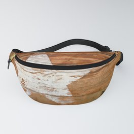 Faded Star Fanny Pack
