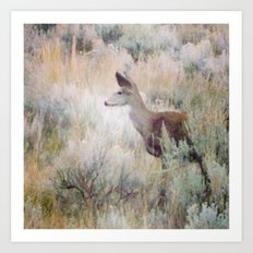 Sage Deer Art Print