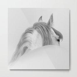 Andalusian Stallion - Digital Painting Metal Print