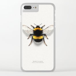 Bombus Lucorum Clear iPhone Case