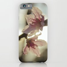 Peach Blossoms iPhone 6s Slim Case