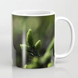 Evergreen Coffee Mug