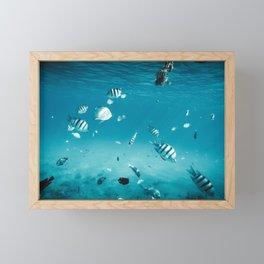 Ezra Framed Mini Art Print