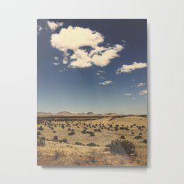 Arizona Desert Landscape Photo Metal Print