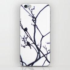 B I R D S. iPhone & iPod Skin