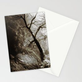 Beyond The Eyes Stationery Cards