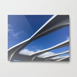 hawaii lines Metal Print
