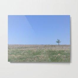Peaceful Meadow Metal Print