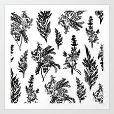 fleur noir Art Print