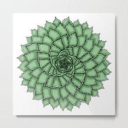 Aloe Polyphylla Metal Print