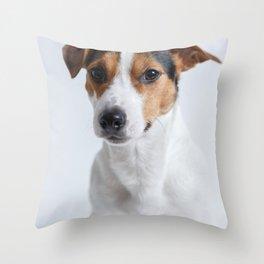 sweet little puppy dog Jack Russel Throw Pillow