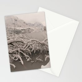 Frozen Lake Bohinj Stationery Cards