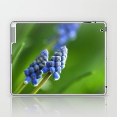 Grape Hyacinths  Laptop & iPad Skin